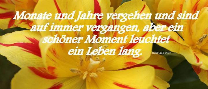 2019.01. Tulpen mit Spruch©LFV Wietzen,EM