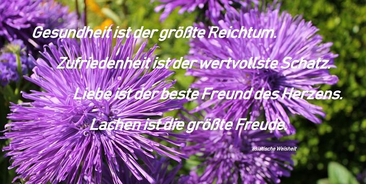2019.08.06 Sternaster mit Spruch.JPG©LFV Wietzen,EM