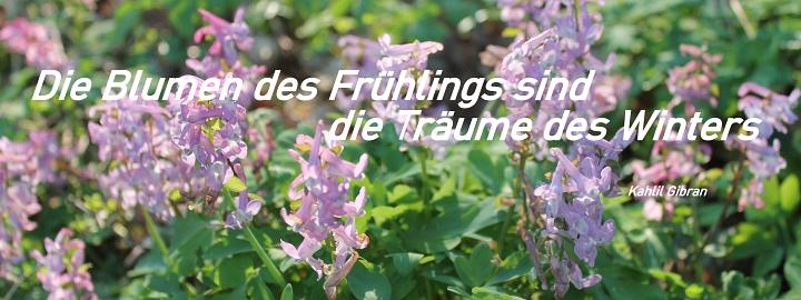 2020 Frühlingsbegrüßung©LFV Wietzen,EM