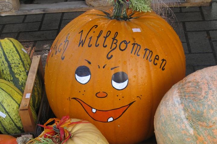 Herbstkürbis Willkommen©LFV Wietzen, EM